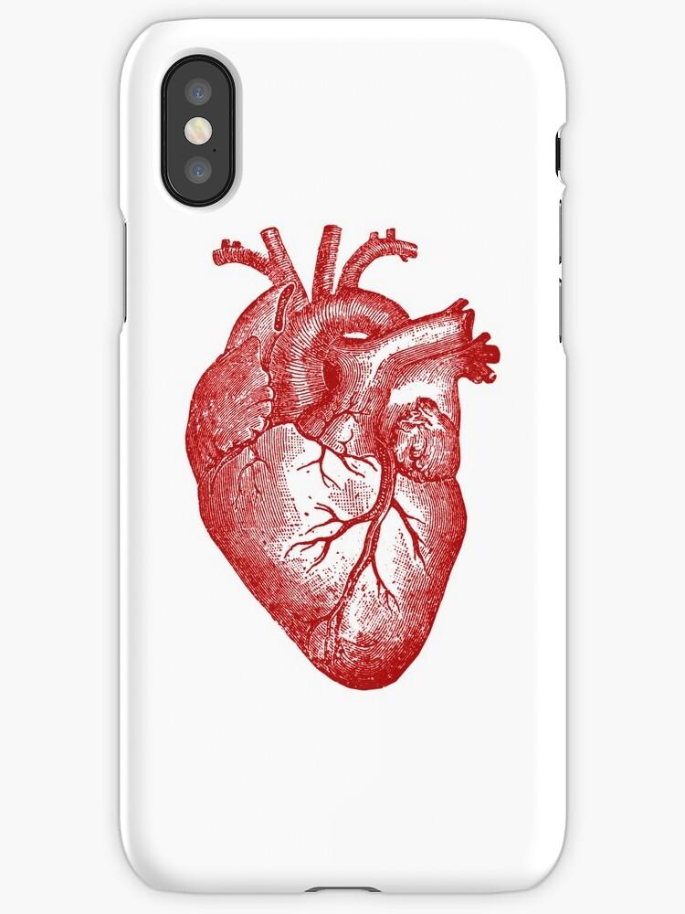 Anatomie du coeur Vintage », Coques et étuis iPhone par ...