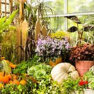 Autumn Conservatory Still Life by Marilyn Cornwell