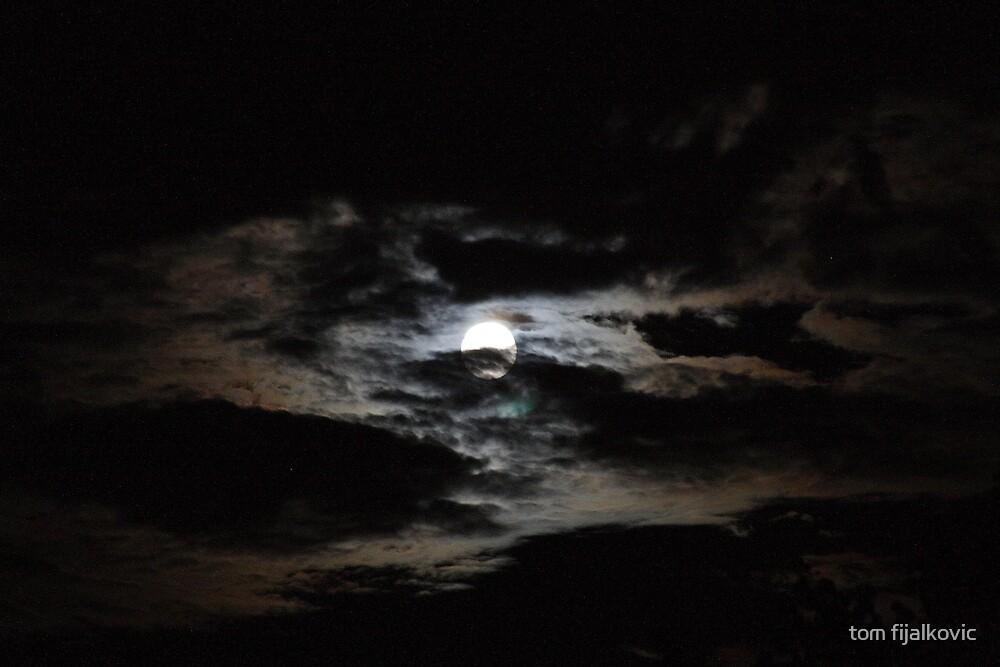 Moonlight in Maryland by tom fijalkovic