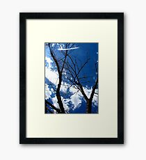 Scary Movie Trees Framed Print