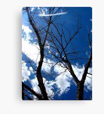 Scary Movie Trees Canvas Print