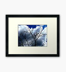 Scary Movie Trees II Framed Print