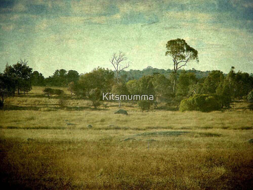 Racecourse Lagoon, Uralla, New South Wales by Kitsmumma