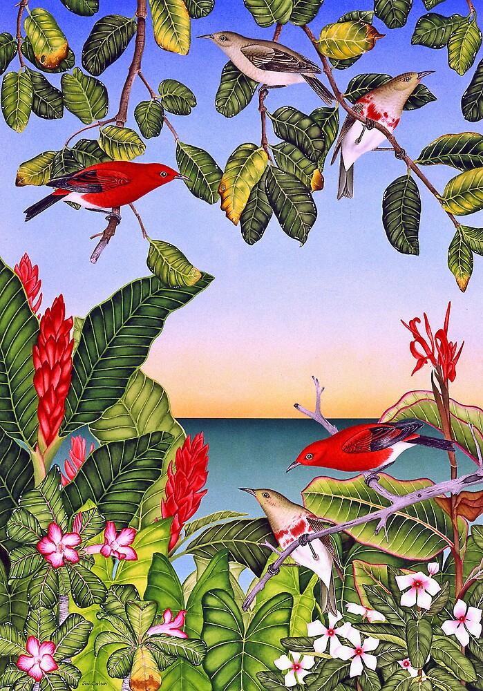 Hawaiian Apanepane by joeyartist