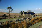 Ditsworthy Warren Farm: Dartmoor Devon by DonDavisUK