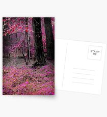 Arboretum Postcards