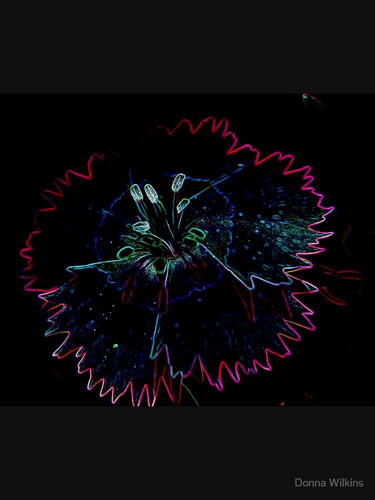 Glowing Dianthus by OrphieG