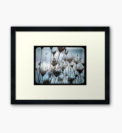 In a Dream Framed Print