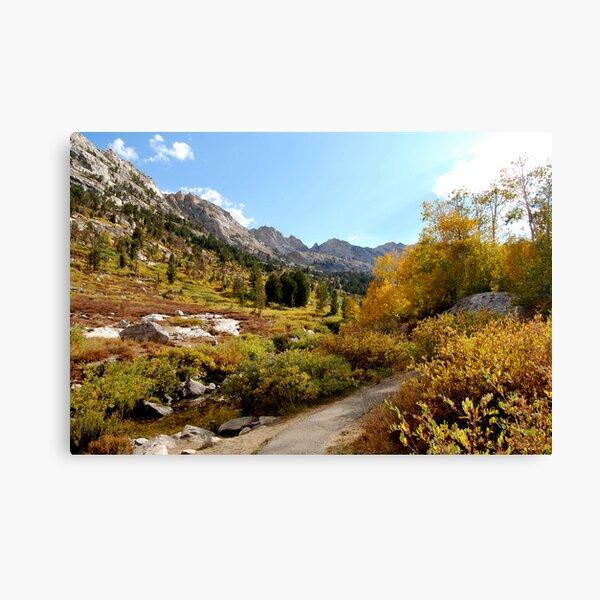 Canyon Pathway Canvas Print