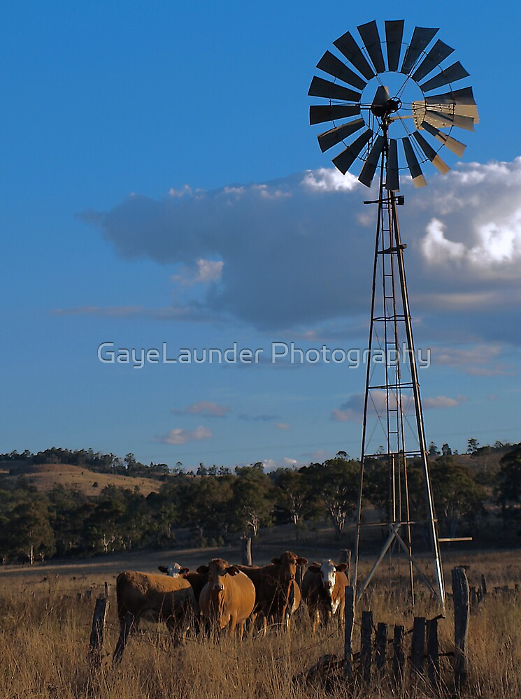 The Windmill by GayeLaunder Photography