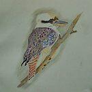Kookaburra  by Alison Howson
