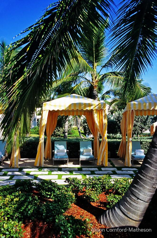 Paradise for Two - Great Exuma, Bahamas by Alison Cornford-Matheson