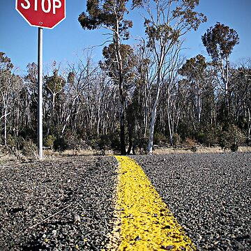 Snowgum Stop Sign by Moloney