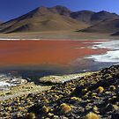The red lake - Bolivie by Christophe Dur