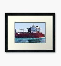 Whitefish Bay Detail Framed Print