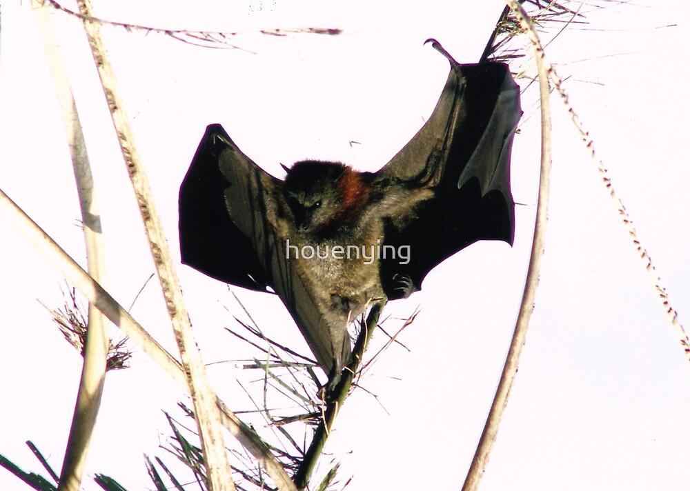 bat-man by houenying