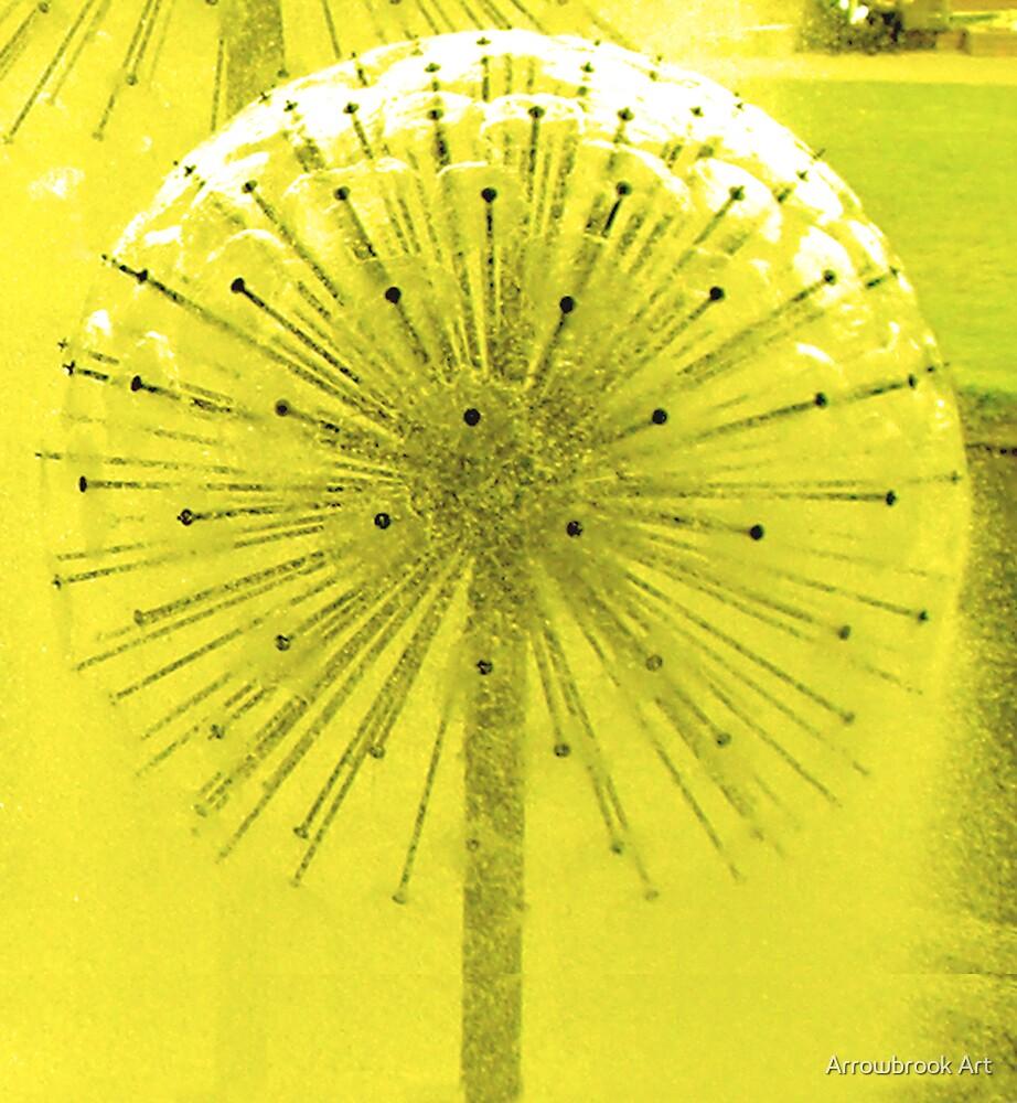 dandelion by John Brotheridge