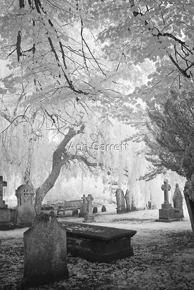 Resting Place by Ann Garrett