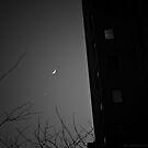 Moon Over Manhattan BW by Judith Oppenheimer