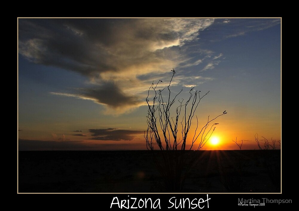 Arizona Sunset by Martina Thompson
