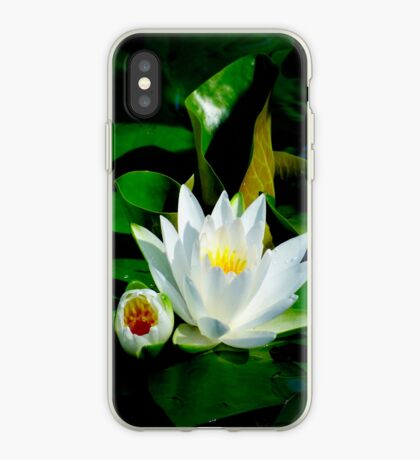 White Water Lily and Bud on Lily Pad iPhone Case