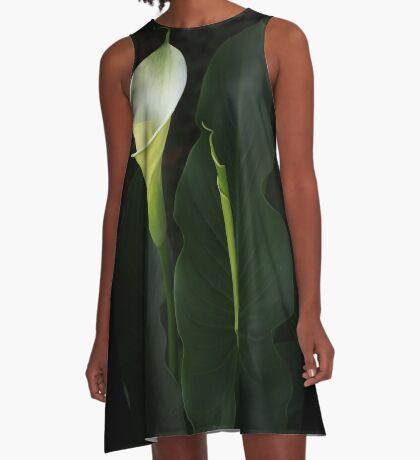 The Goddess Lily A-Line Dress