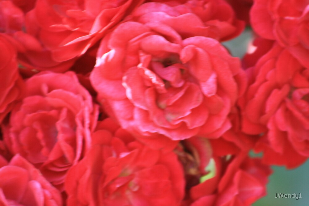 A bunch of red roses by 1Wendy1