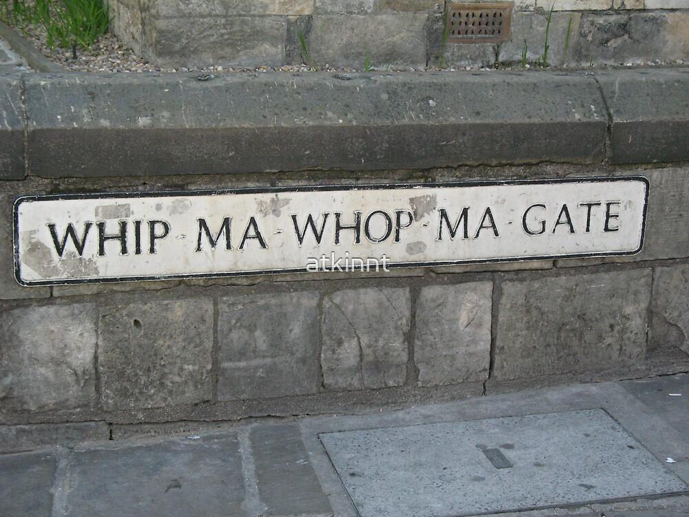 Whip-Ma-Whop-Ma-Gate Street Sign by atkinnt