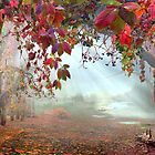 Autumnal Still by Igor Zenin