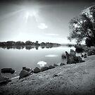 Snake River....Marsing , Idaho by Diane Arndt