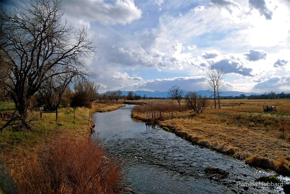 Erie Colorado Farmland by Pamela Hubbard