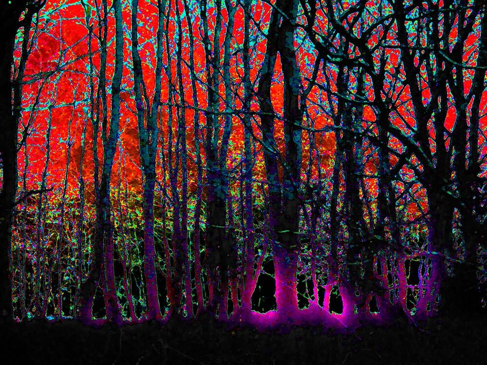 Forest Glow 5 by wysiwyg