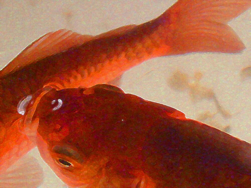 Kissing Fish by wysiwyg