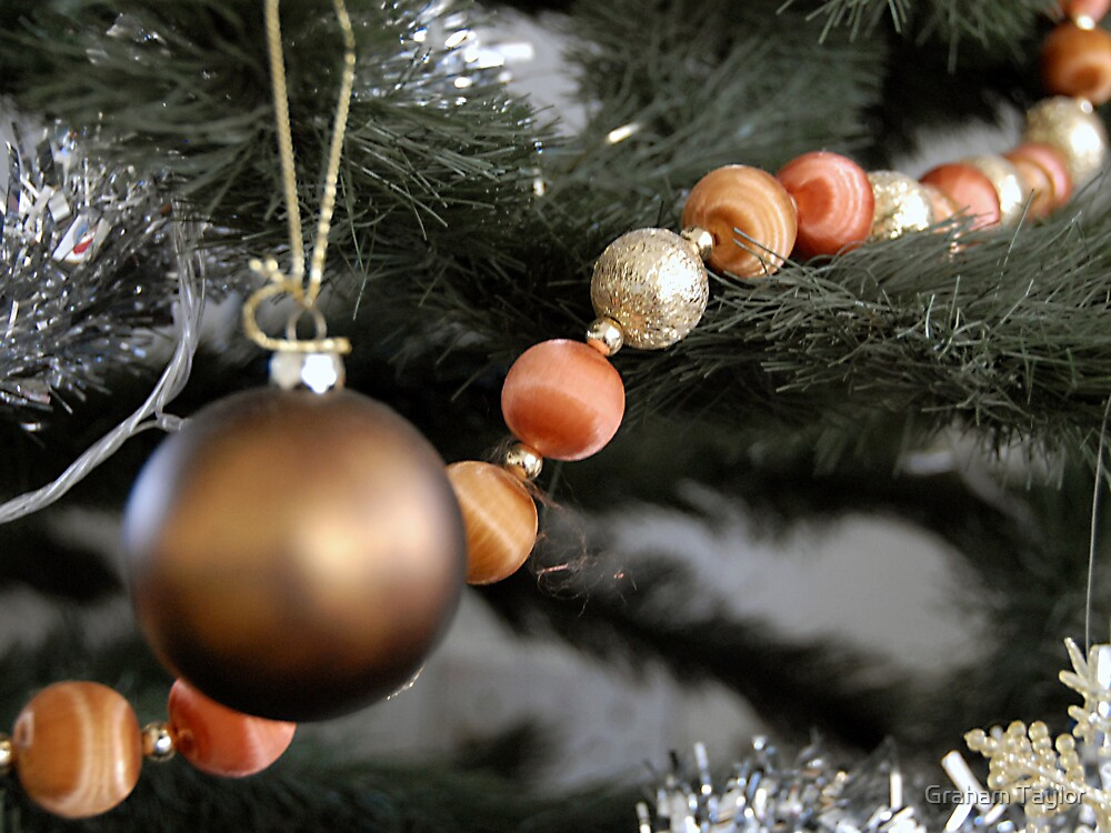 Christmas Decoration by Graham Taylor