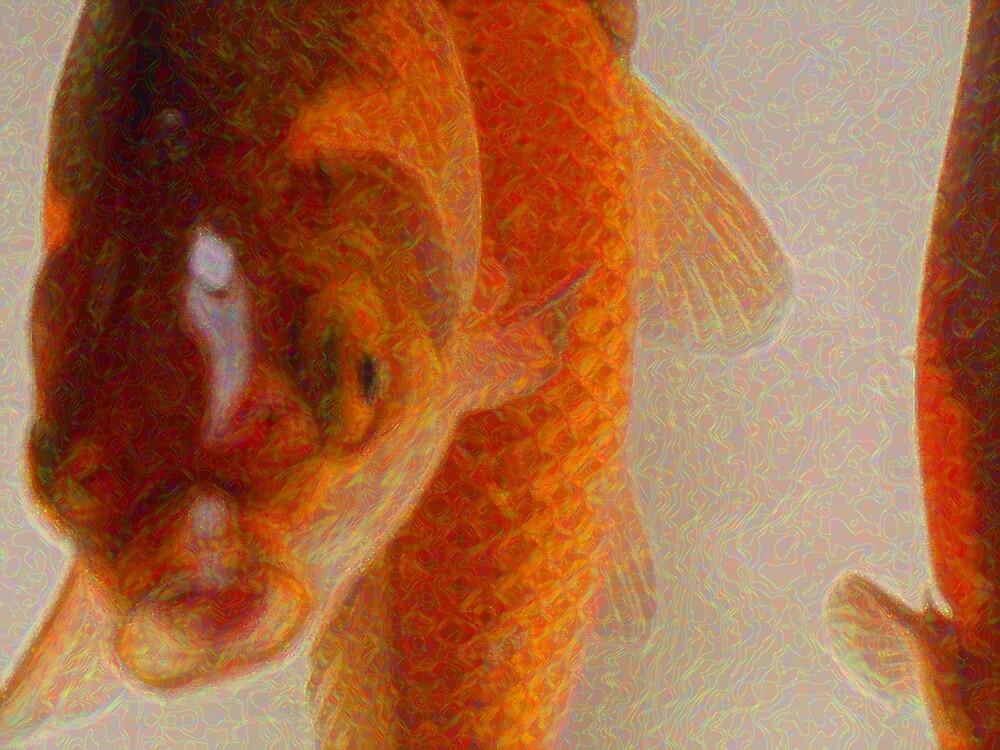 Talking Fish by wysiwyg