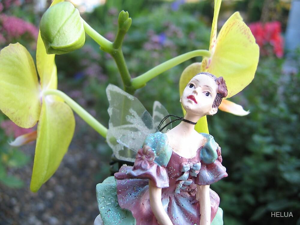 I Really Like Your Garden by HELUA