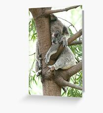 Time to snooze Greeting Card