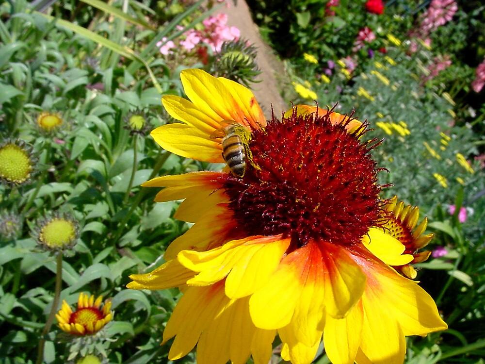 Bee Good by Liz Wear