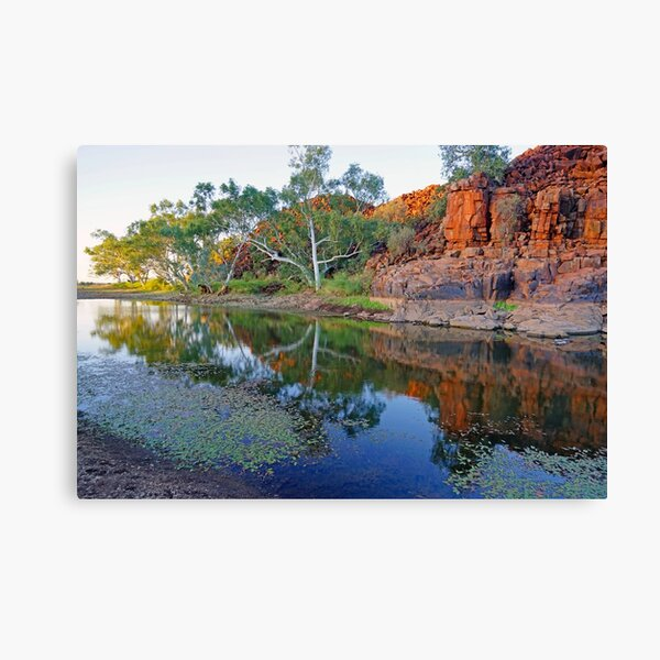 Outback Pool Canvas Print