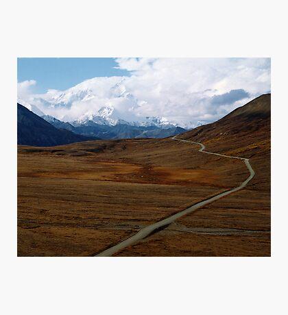 Alaska's Denali National Park Photographic Print