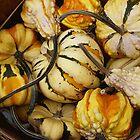 Gourds In A basket by WildestArt