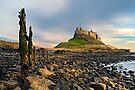 Classic Lindisfarne - Holy Island by David Lewins
