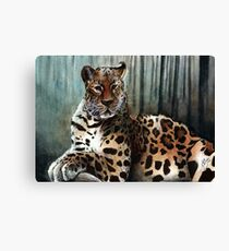 Watercolor Wildlife: Scarce Canvas Print