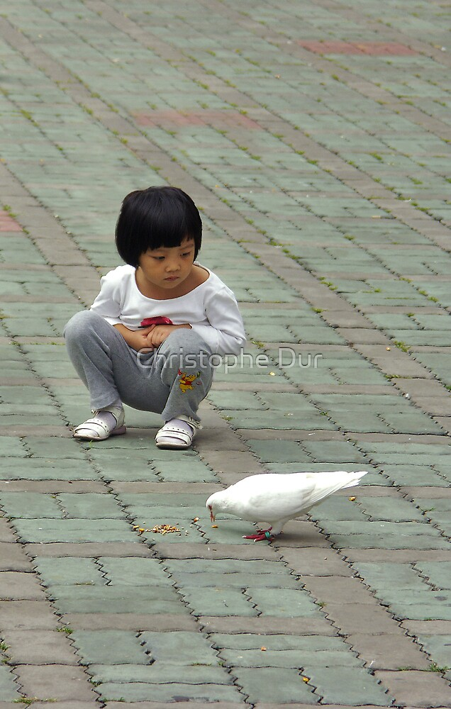 The Girl and the Dove - China by Christophe Dur