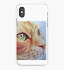 Wonder Cat, photorealistic drawing iPhone Case/Skin
