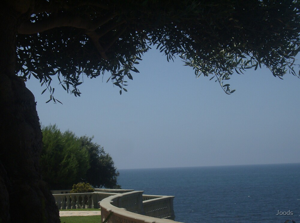 serenity spot by Joods