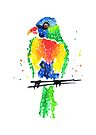 Rainbow Lorikeet by makemerriness