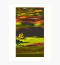Palouse hills, Washington Art Print