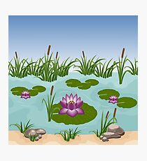 Lilies in lake Photographic Print