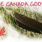 THE CANADA GOOSE by Stephen Thomas